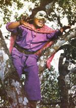Zorro Kemayoran