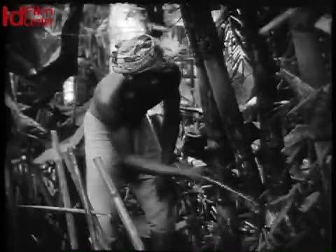 Industri-Bambu