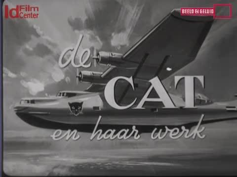CAT-Dan-Pekerjaan-Nya