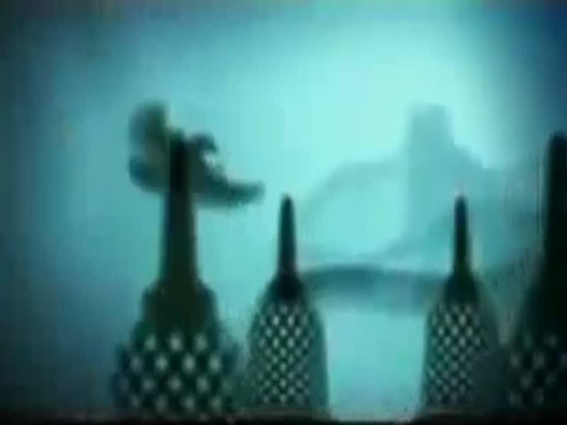 Garuda-Indonesia-Wayang