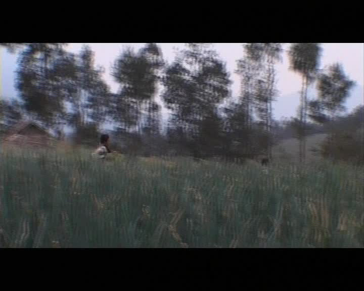 Pagi-dan-Edelweiss-Subtitel-Bahasa-Inggris