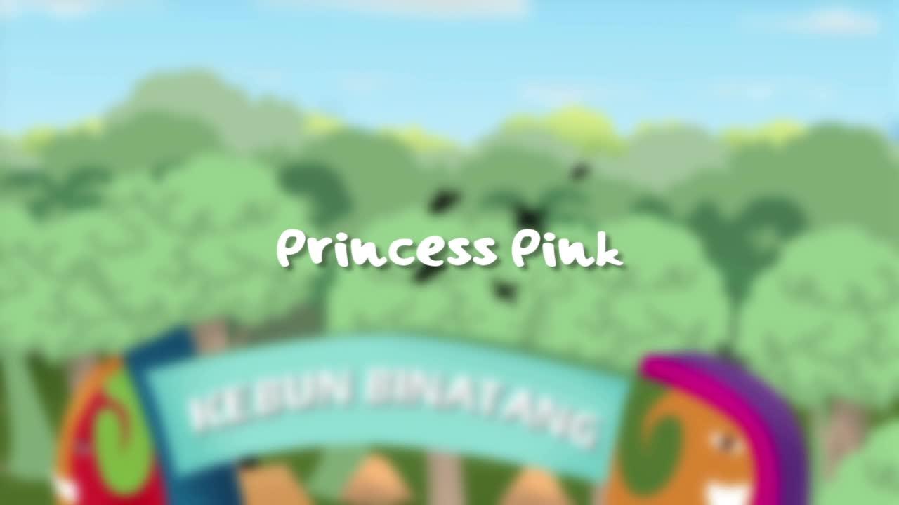 Animation-Series-Princess-Pink