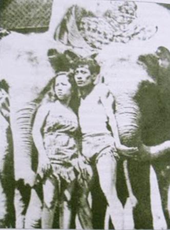 Alang-Alang 1