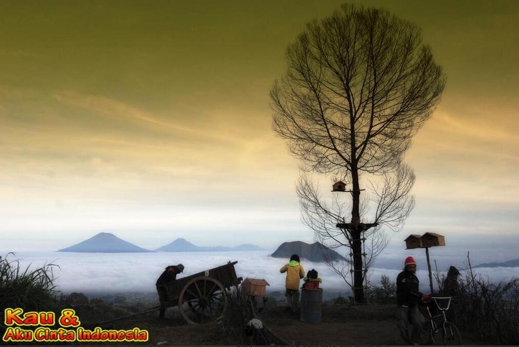 Kau dan Aku Cinta Indonesia 1