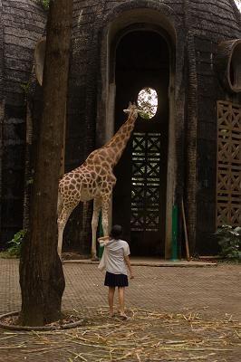Kebun Binatang 2