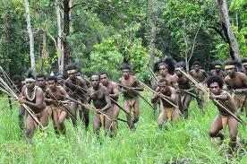 Lost In Papua 8