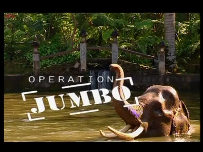 Operation-Jumbo