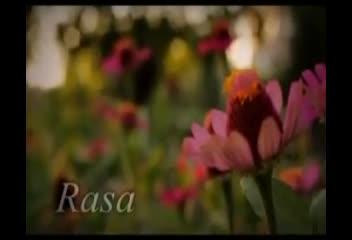 RASA-Subtitel-Bahasa-Inggris